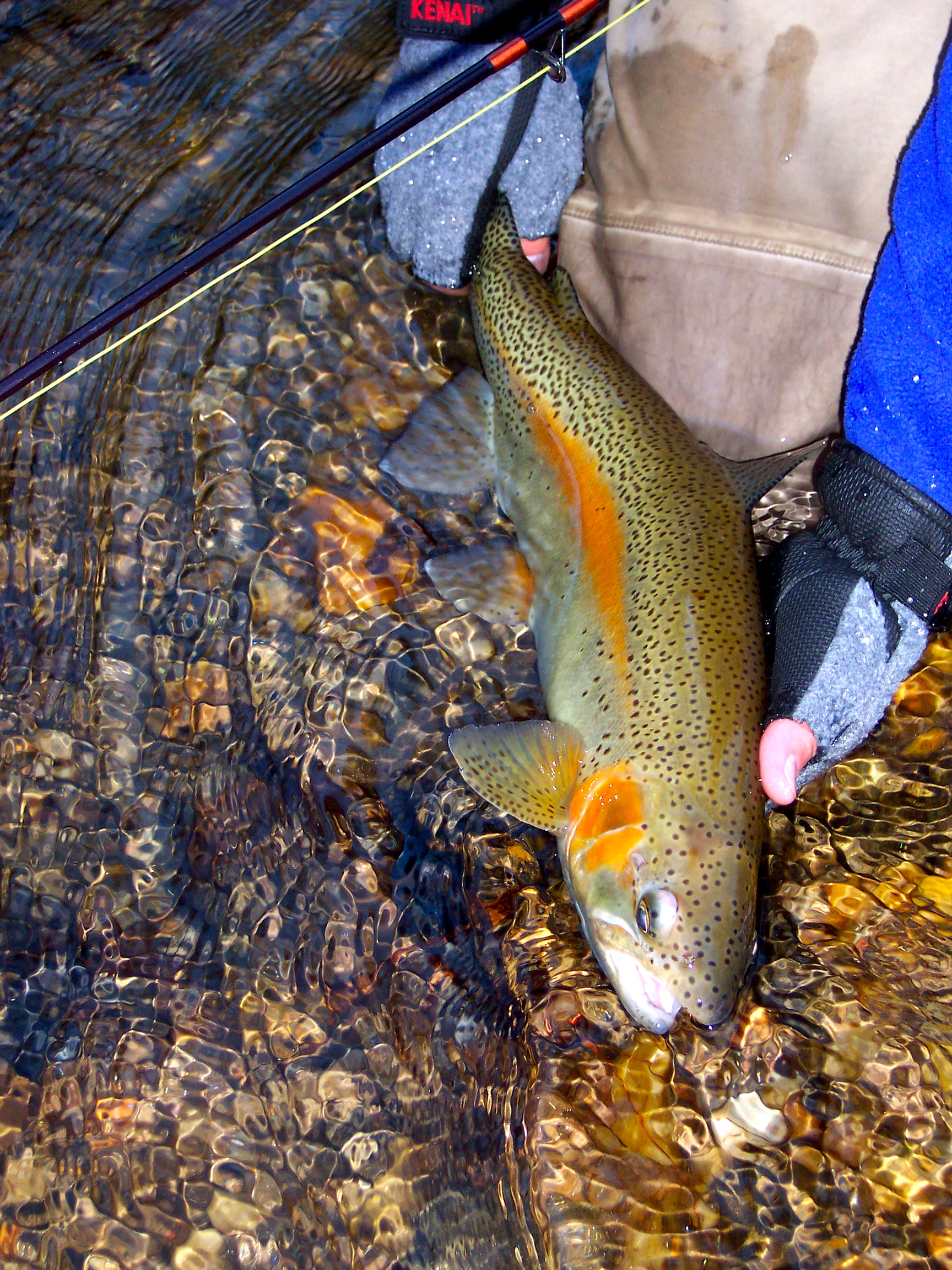 Public water – Unicoi Outfitters